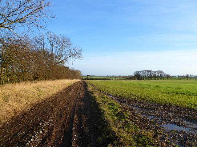 Farmland and track, Scorton