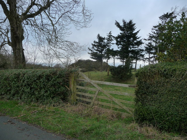 Bishop's Moat motte and bailey