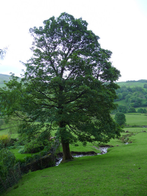 Farmland, Troutbeck, Cumbria