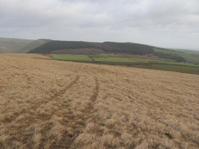 Moorland east of Pen y Foel