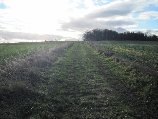 Green  Lane  from  Mugdale