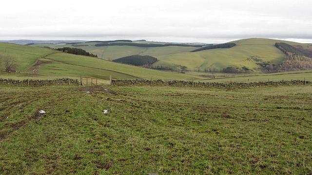Grazing land, Symington