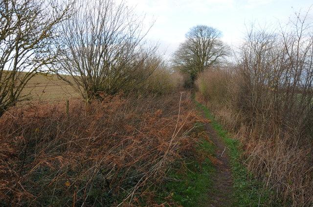 Bridleway at Harewood End