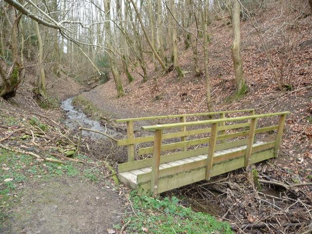 Footbridge in Cwmmawr Dingle