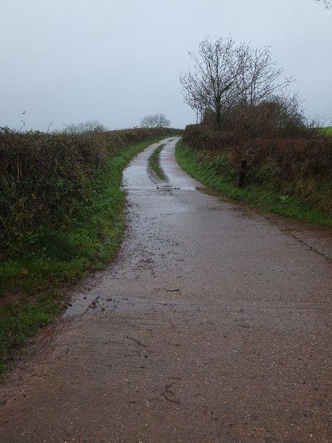 Farm access road to Backswood Farm