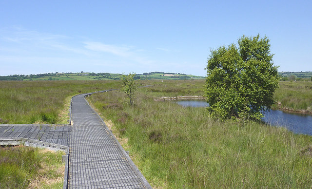 Board-walk on Cors Caron, Ceredigion