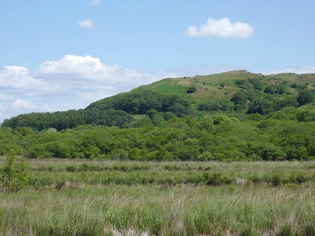 Hillside by Cors Caron north of Tregaron, Ceredigion
