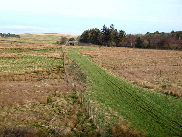 Trackbed of the old Rothbury line