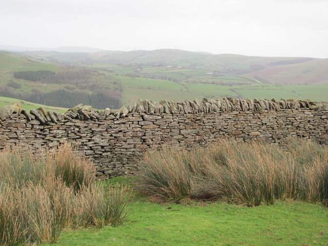Stone wall north of Cae Abbot