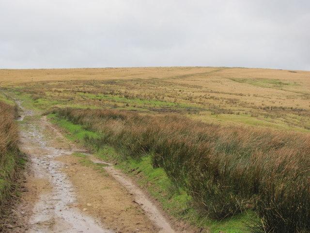 Track looking north towards Pen y Foel
