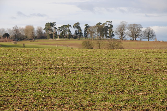 Arable land at Harewood End