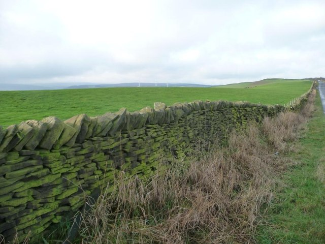 Dry stone wall along Whitley Road