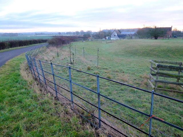 Pasture near Holiday's Farm