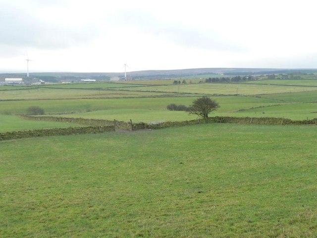 Farmland below Lower Maythorn Lane