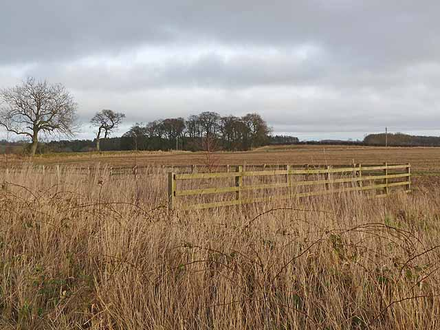 Fences and fields near Hartburn