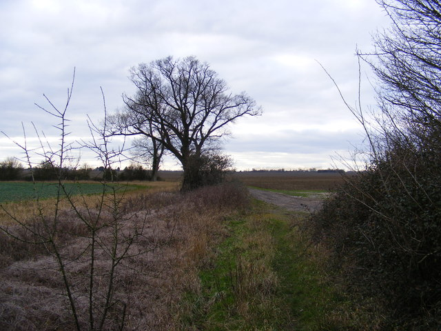 Kings Lane Bridleway to Mill Cottage