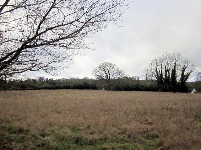 Barnt Green, Fiery Hill Road - Open Fields For Now!