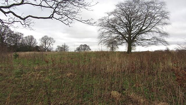 Parkland, Edmonstone