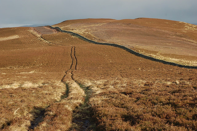 Track through the heather below White Knowe