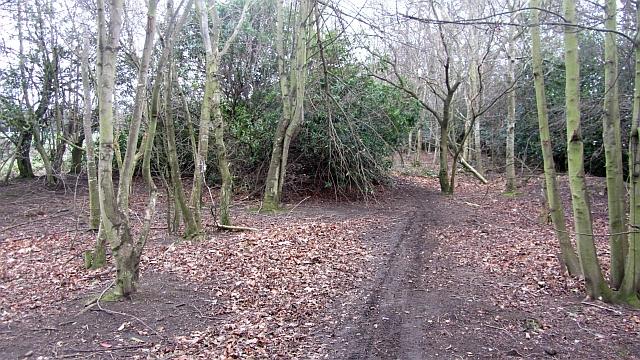 Path, Hunter's Hall