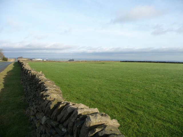 Dry stone wall alongside Haddingley Lane