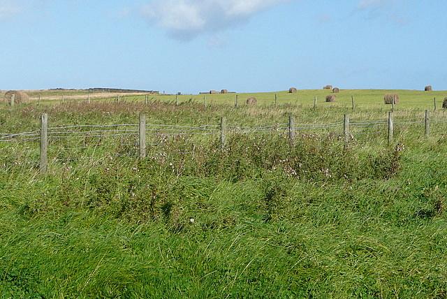 Land at Boulby Barns Farm