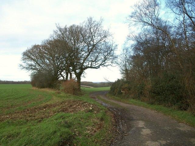 Norheads Lane