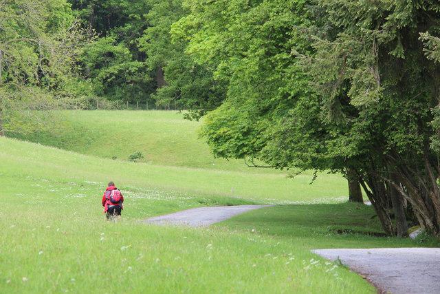 Path, Windermere, Cumbria
