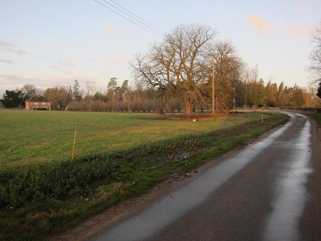 Road past Ryston Hall