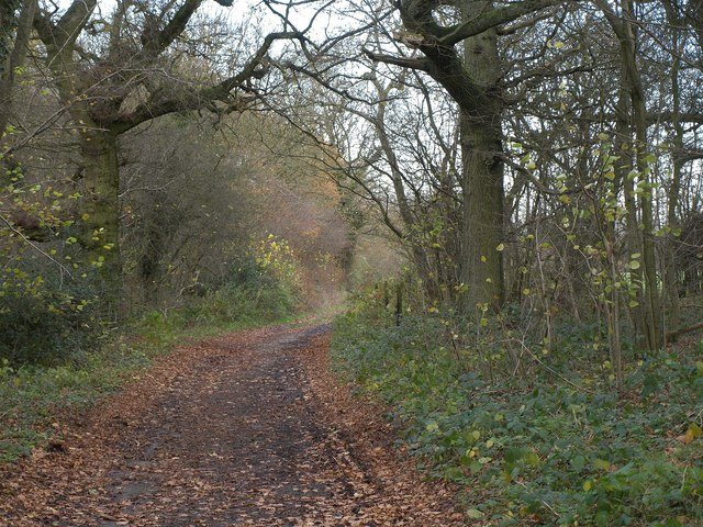 Norheads Lane