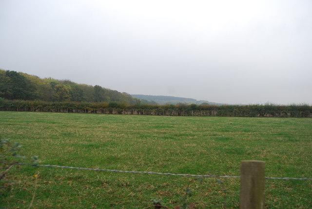 Farmland by South Street