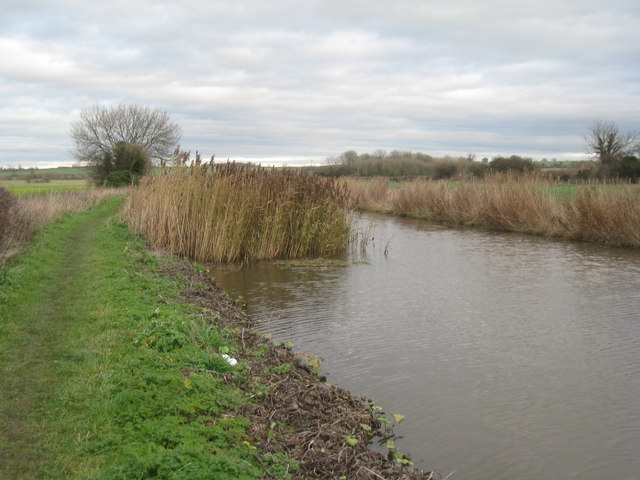 Narrowed canal