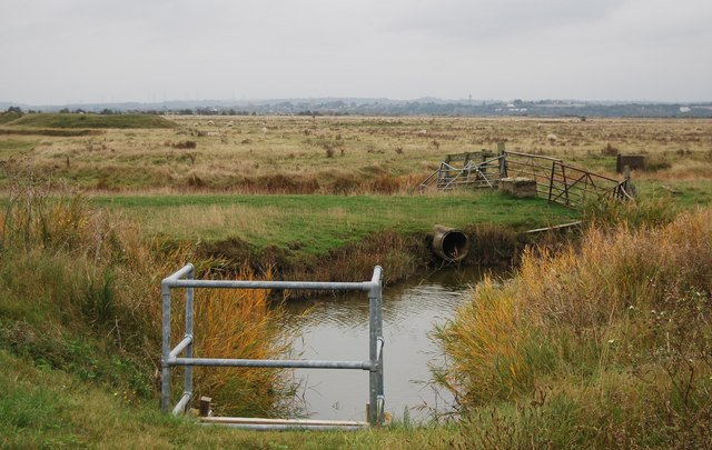 Drain, Cliffe Marshes