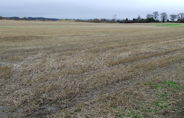 Field at Meadowfield Farm