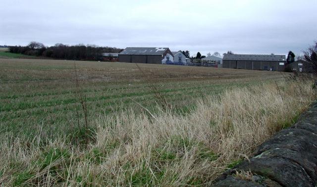 Meadowfield Farm