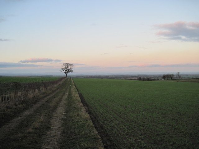 Track  to  Slingsby