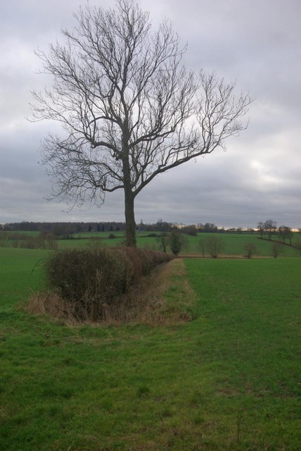Farmland east of Stretton on Dunsmore