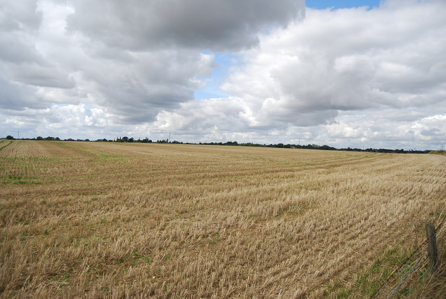 Stubble by Henley Rd