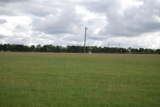 Telegraph pole in field