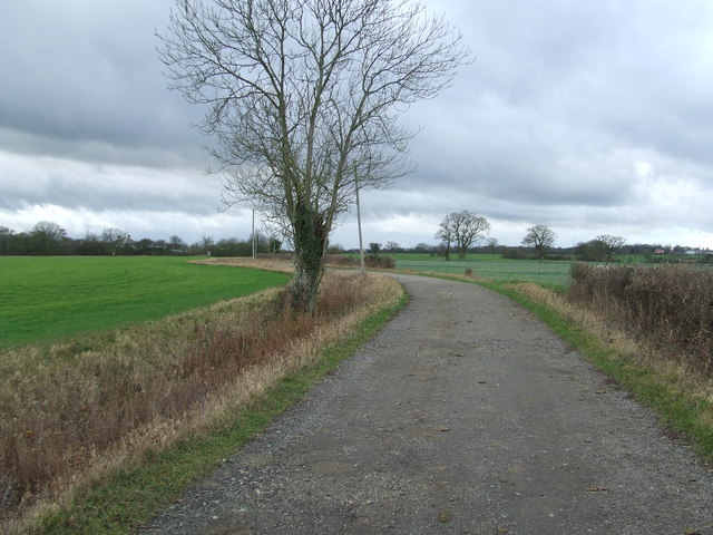 Hawk's Lane