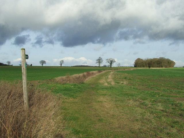Footpath To Hawks Farm