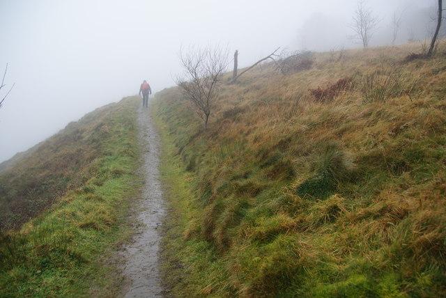 Path on Llechwedd Gwinau