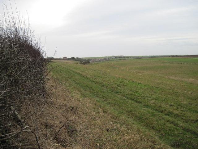 Earthworks  north  of  Buckton