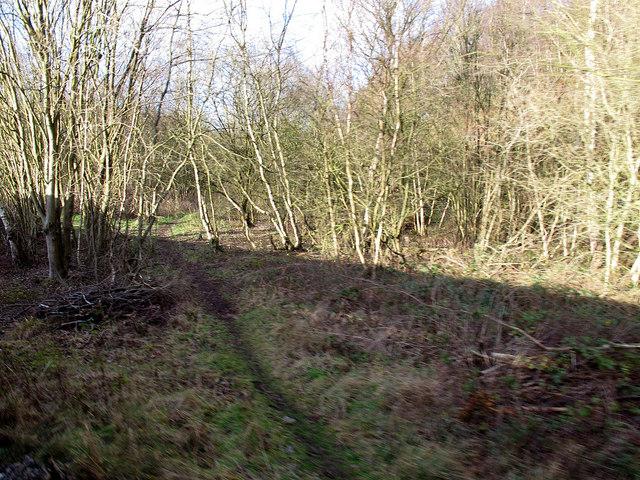 Former railway chord