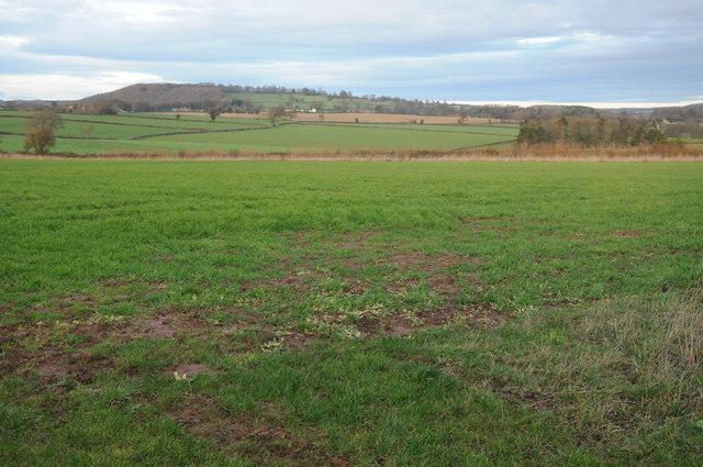 Farmland near Fawley Cross