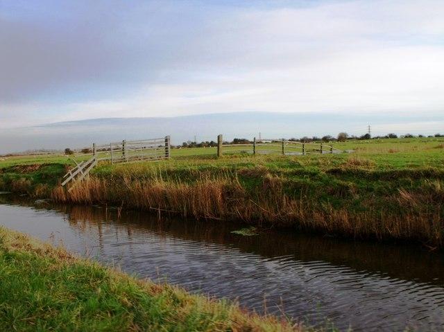 Rickney Sewer, Pevensey Levels