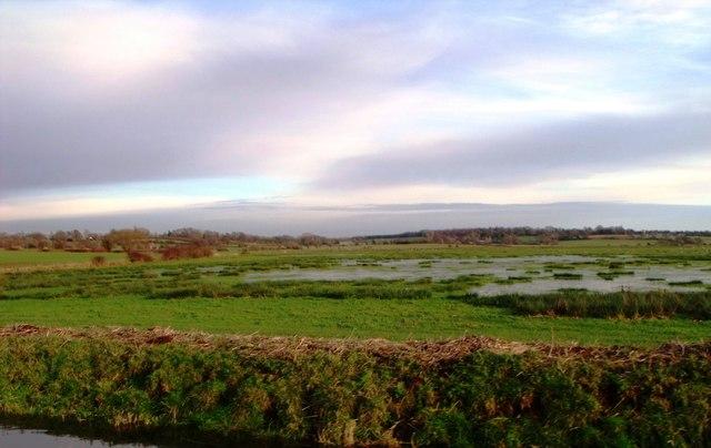 Marshland, Pevensey Levels