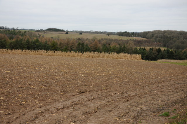 Arable field above Alder Bank