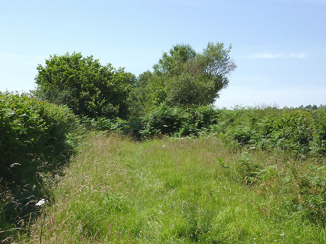 Bridleway north of Tregaron, Ceredigion