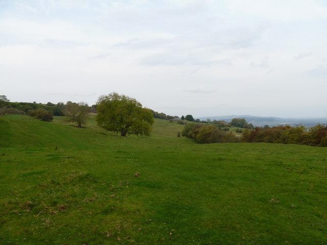 Towards Little Farmcote